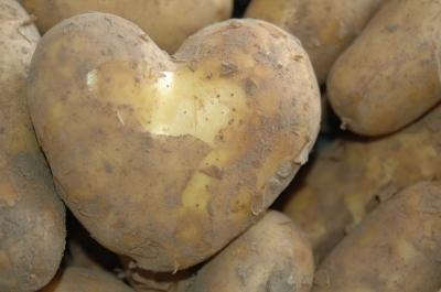 Job Kartoffel Hotel Lneburger Heide  kartoffelhotelde